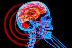 Мобильный телефон оказывает вредное воздействие на мозг