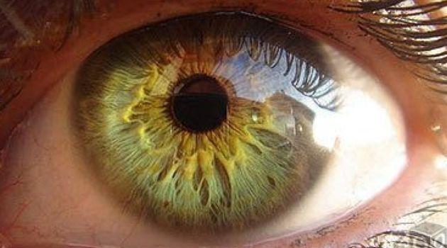 Цвет глаз: его значение и тайны